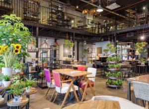 Top 5 Pocket-Friendly Cafes In Kolkata